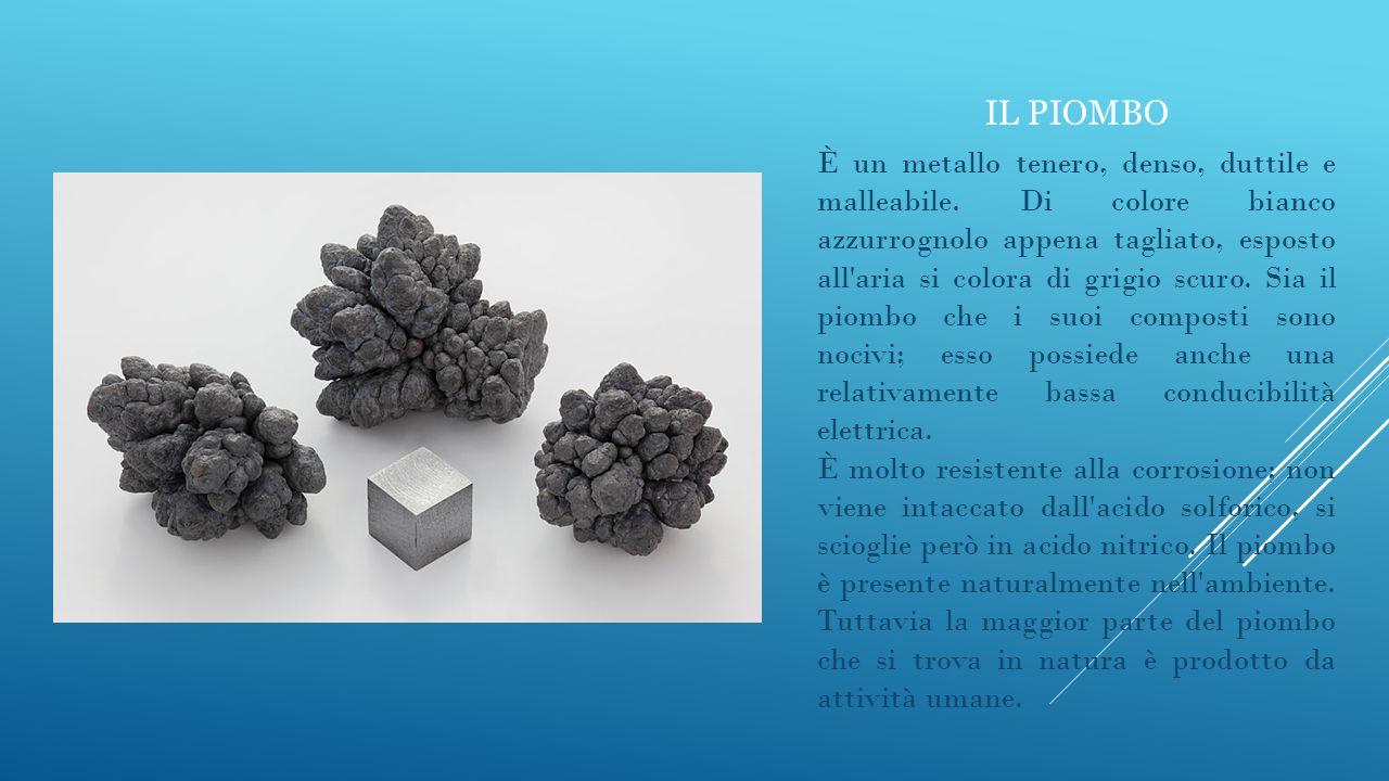 IL PIOMBO È un metallo tenero, denso, duttile e malleabile. Di colore bianco azzurrognolo appena tagliato, esposto all'aria si colora di grigio scuro.