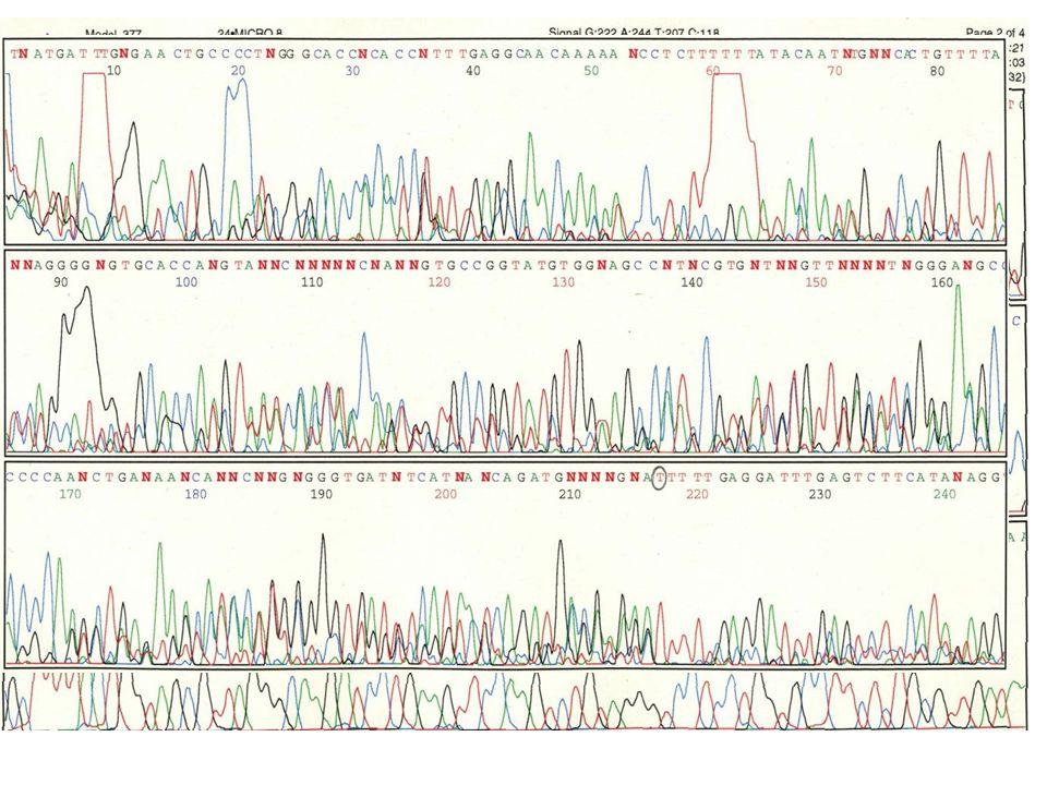 Marcatura Fluorocromo dell'infrarosso Fluorocromi : fluoresceina, Texas red, ecc.