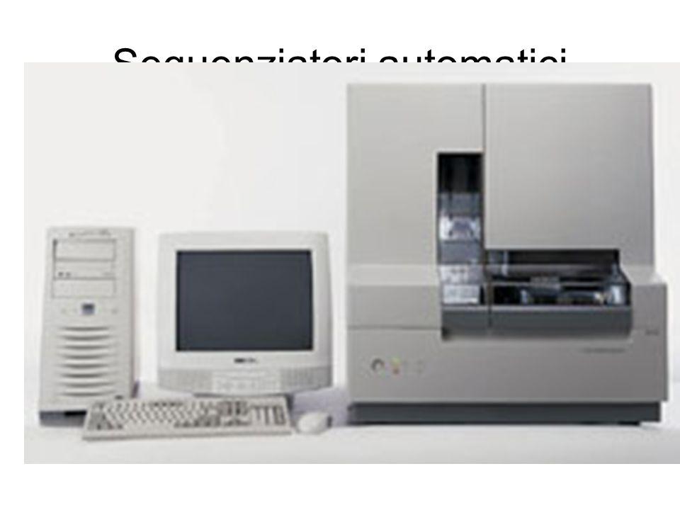 Sequenziatori automatici Modulo elettroforetico –Raggio laser –Fotodiodi –Piastra termostatica Modulo per l'alimentatore Computer –Software Controllo del sistema Analisi ed elaborazione dati