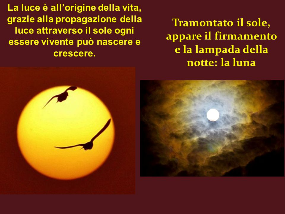 Tramontato il sole, appare il firmamento e la lampada della notte: la luna La luce è all'origine della vita, grazie alla propagazione della luce attraverso il sole ogni essere vivente può nascere e crescere.