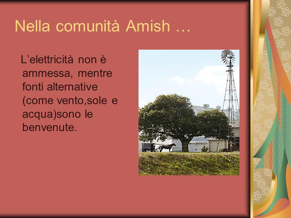 La vita degli Amish oggi Gli Amish vivono come contadini e artigiani in campagna che tengono gelosamente libere dalle intrusioni della civilizzazione