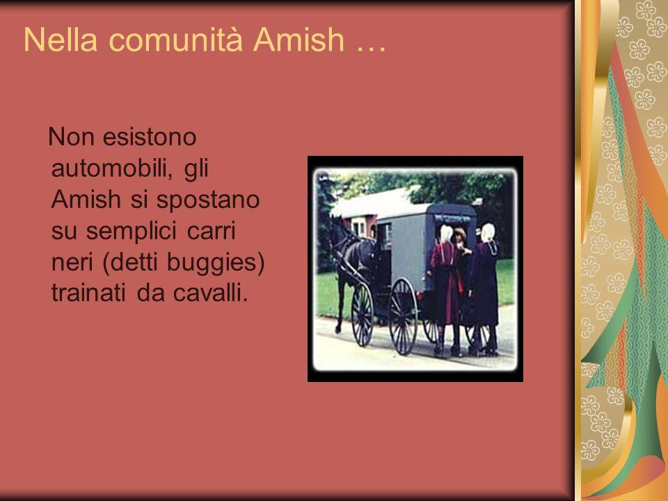 Nella comunità Amish … L'elettricità non è ammessa, mentre fonti alternative (come vento,sole e acqua)sono le benvenute.