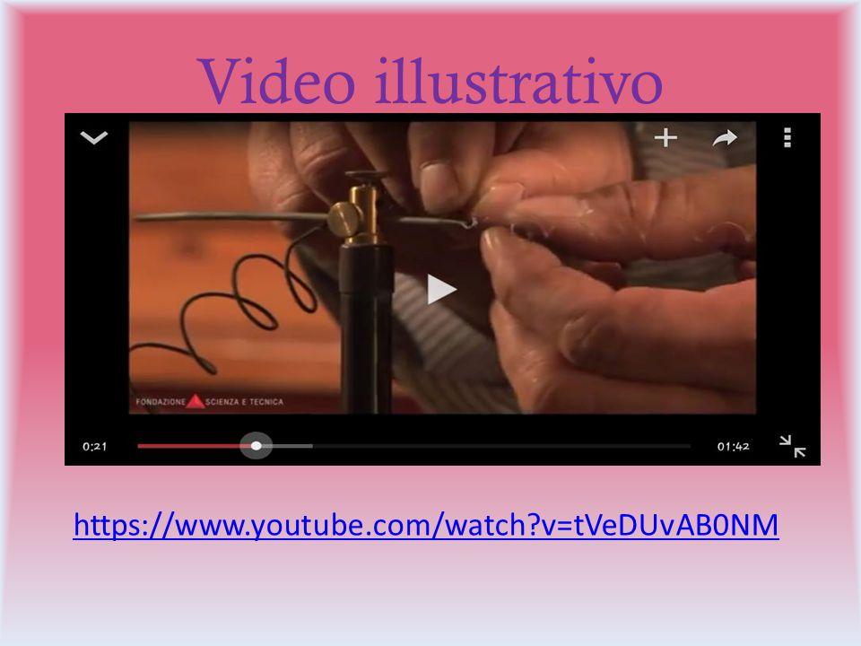 Video illustrativo https://www.youtube.com/watch?v=tVeDUvAB0NM