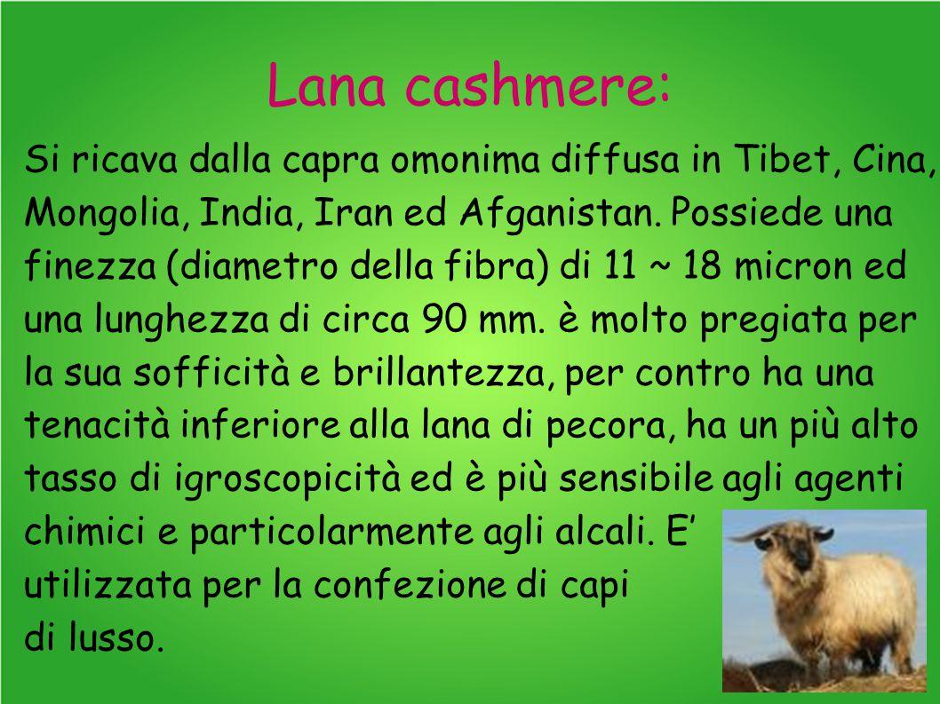 Lana cashmere: Si ricava dalla capra omonima diffusa in Tibet, Cina, Mongolia, India, Iran ed Afganistan. Possiede una finezza (diametro della fibra)