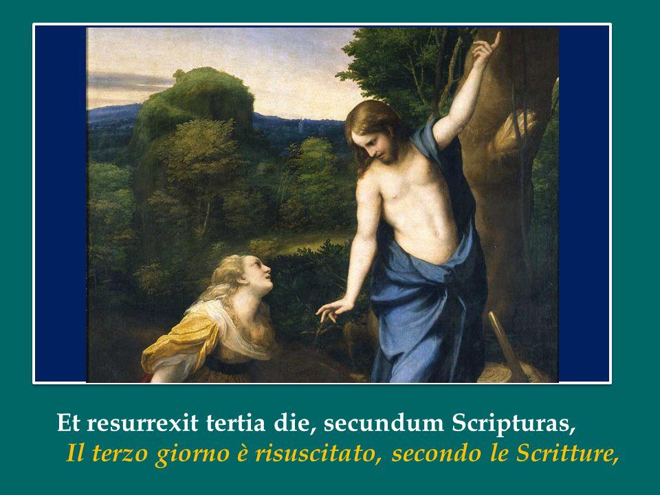 Et resurrexit tertia die, secundum Scripturas, Il terzo giorno è risuscitato, secondo le Scritture,