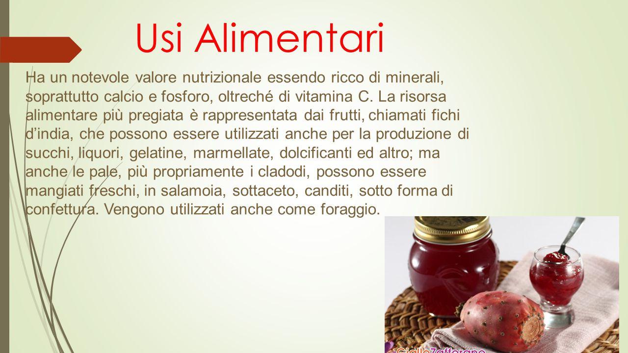 Usi Alimentari Ha un notevole valore nutrizionale essendo ricco di minerali, soprattutto calcio e fosforo, oltreché di vitamina C.