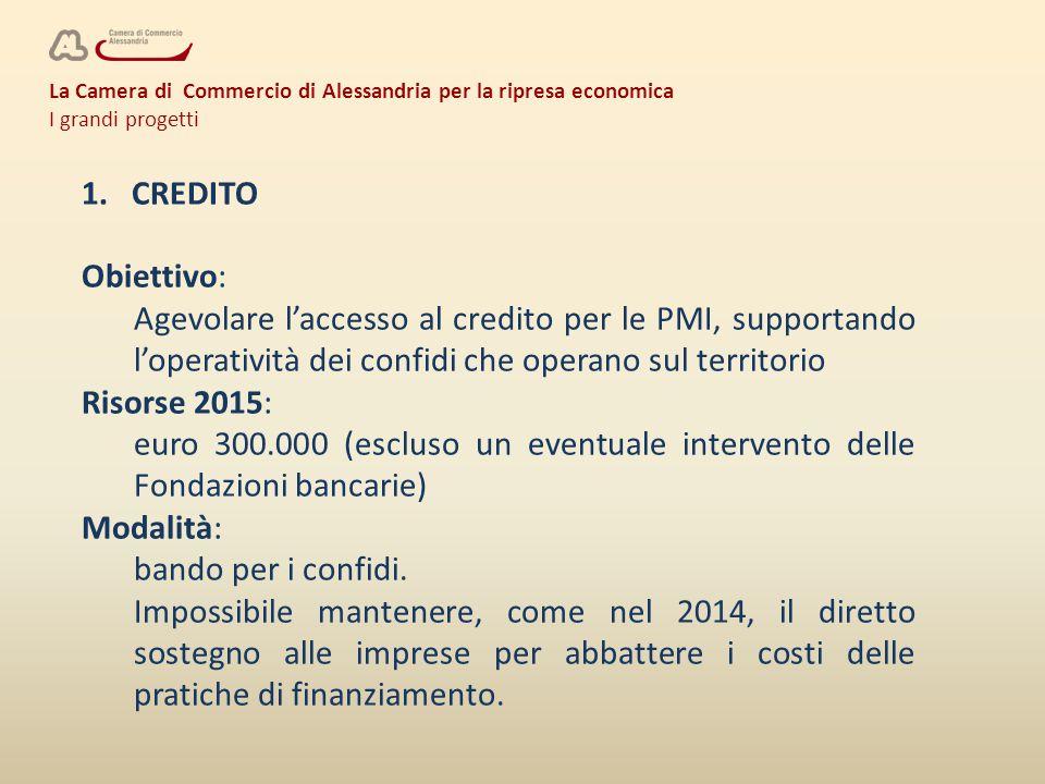 La Camera di Commercio di Alessandria per la ripresa economica I grandi progetti 1. CREDITO Obiettivo: Agevolare l'accesso al credito per le PMI, supp