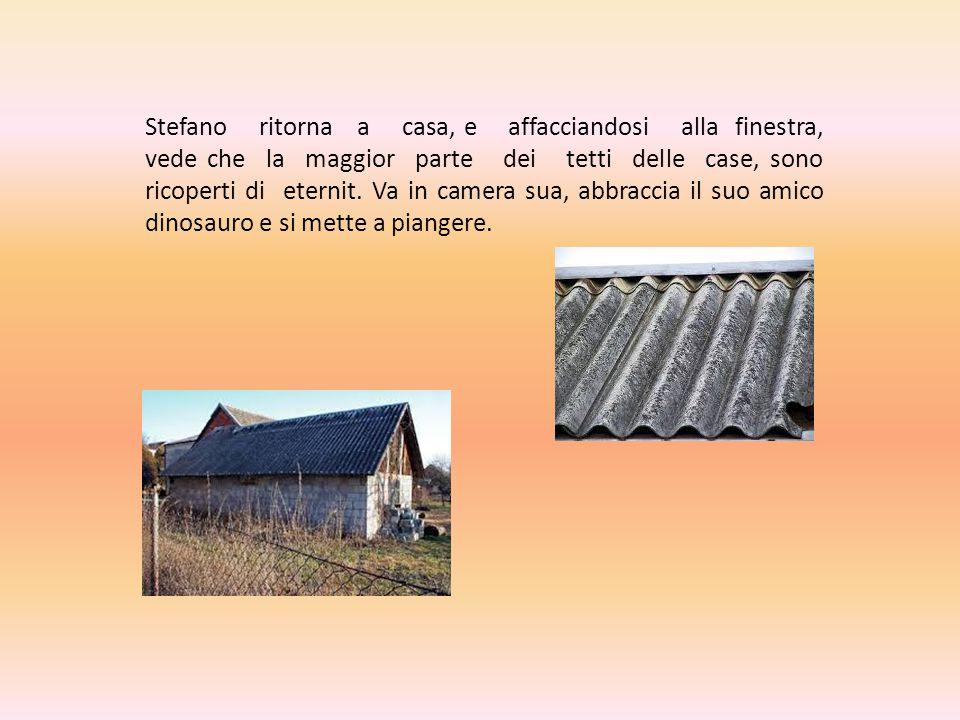Stefano ritorna a casa, e affacciandosi alla finestra, vede che la maggior parte dei tetti delle case, sono ricoperti di eternit.