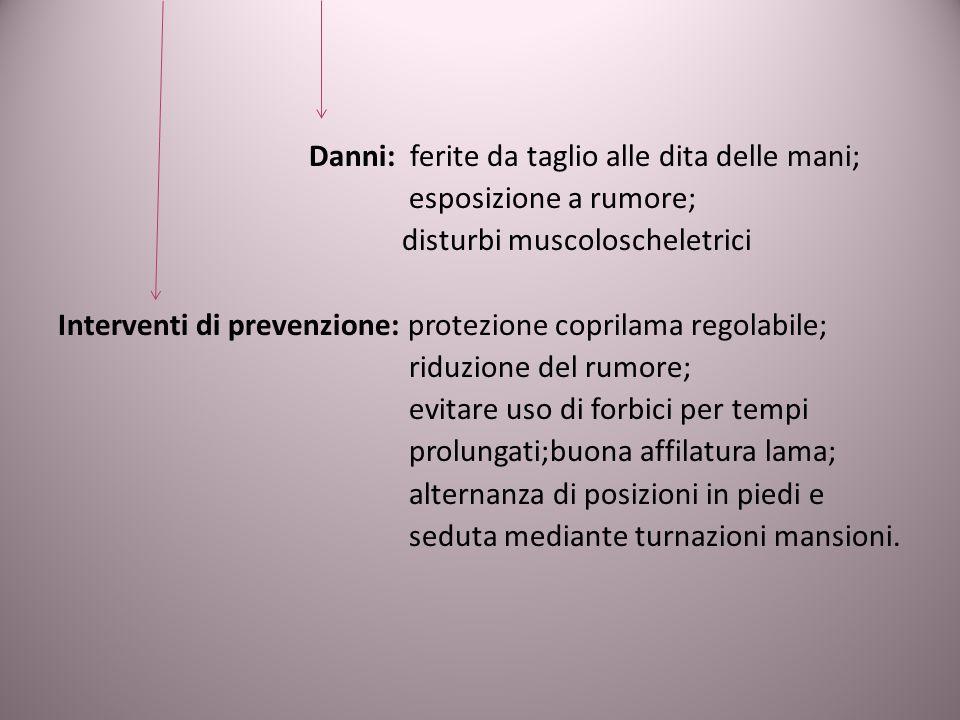 Danni: ferite da taglio alle dita delle mani; esposizione a rumore; disturbi muscoloscheletrici Interventi di prevenzione: protezione coprilama regola