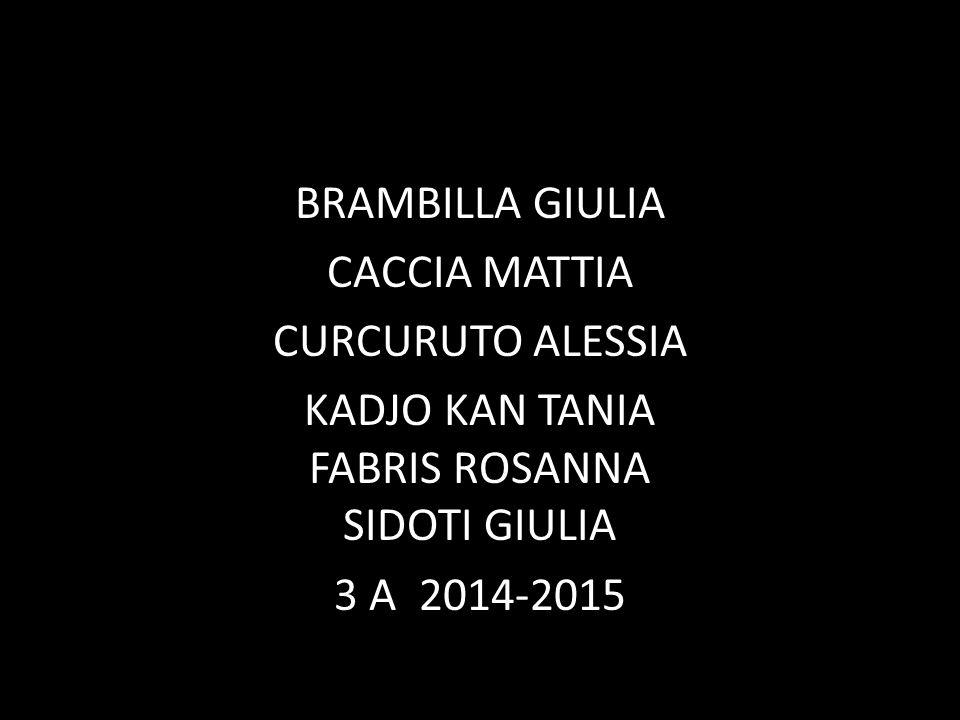 BRAMBILLA GIULIA CACCIA MATTIA CURCURUTO ALESSIA KADJO KAN TANIA FABRIS ROSANNA SIDOTI GIULIA 3 A 2014-2015