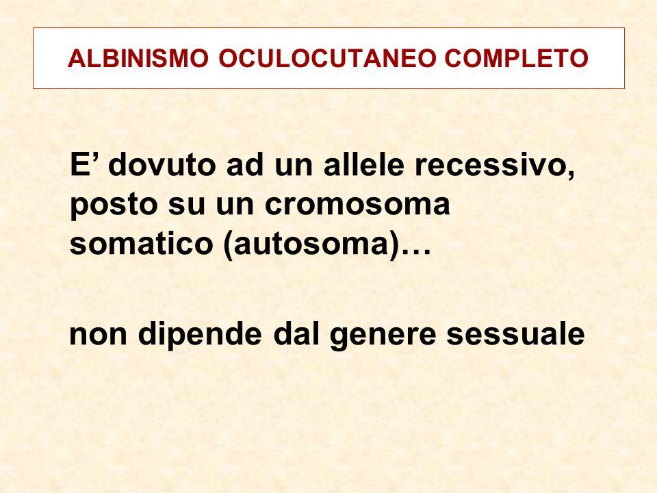 ALBINISMO OCULOCUTANEO COMPLETO E' dovuto ad un allele recessivo, posto su un cromosoma somatico (autosoma)… non dipende dal genere sessuale