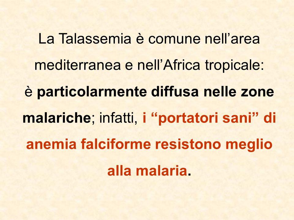 La Talassemia è comune nell'area mediterranea e nell'Africa tropicale: è particolarmente diffusa nelle zone malariche; infatti, i portatori sani di anemia falciforme resistono meglio alla malaria.