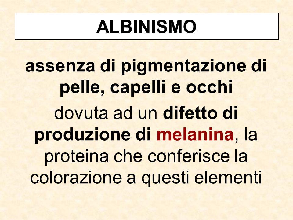 ALBINISMO assenza di pigmentazione di pelle, capelli e occhi dovuta ad un difetto di produzione di melanina, la proteina che conferisce la colorazione a questi elementi
