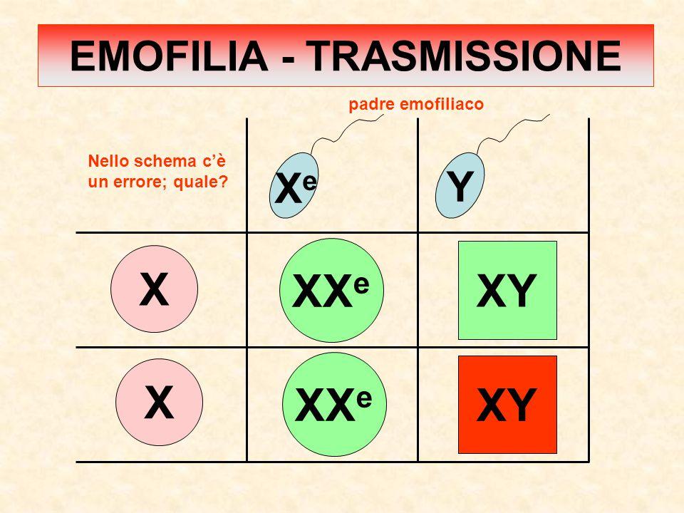 X X XeXe Y XX e XY XX e padre emofiliaco Nello schema c'è un errore; quale? EMOFILIA - TRASMISSIONE