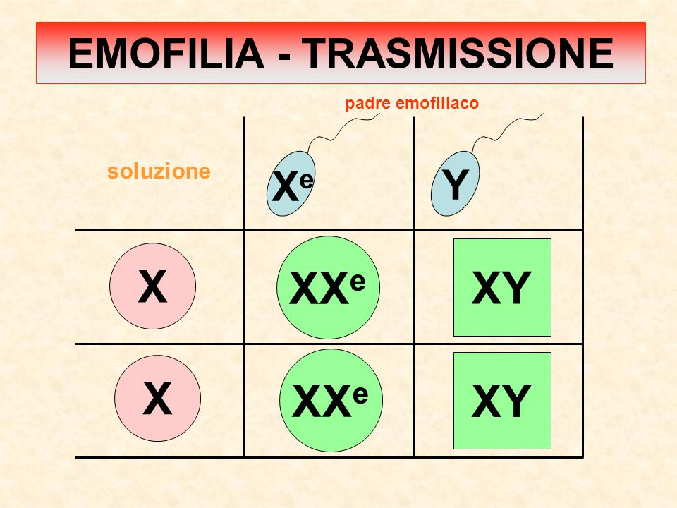 X X XeXe Y XX e XY XX e padre emofiliaco soluzione EMOFILIA - TRASMISSIONE