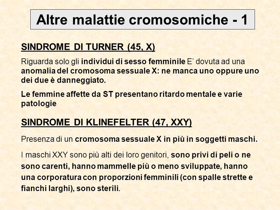 Altre malattie cromosomiche - 1 SINDROME DI TURNER (45, X) Riguarda solo gli individui di sesso femminile E' dovuta ad una anomalia del cromosoma sessuale X: ne manca uno oppure uno dei due è danneggiato.