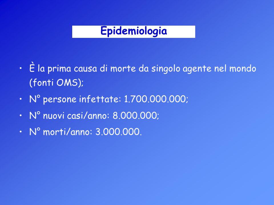 È la prima causa di morte da singolo agente nel mondo (fonti OMS); N° persone infettate: 1.700.000.000; N° nuovi casi/anno: 8.000.000; N° morti/anno: