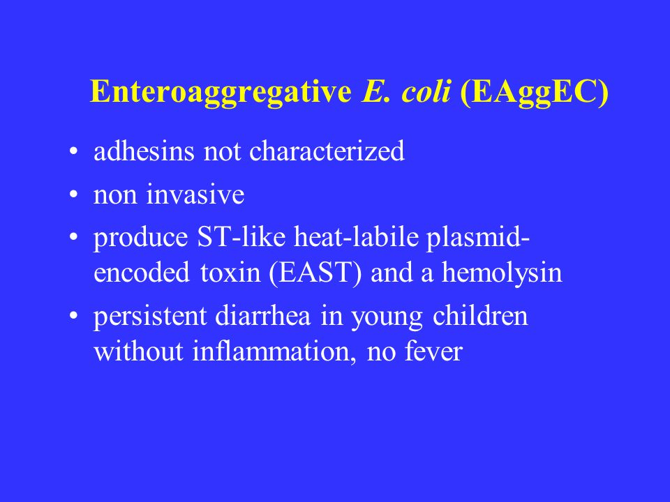Enteroaggregative E. coli (EAggEC) adhesins not characterized non invasive produce ST-like heat-labile plasmid- encoded toxin (EAST) and a hemolysin p