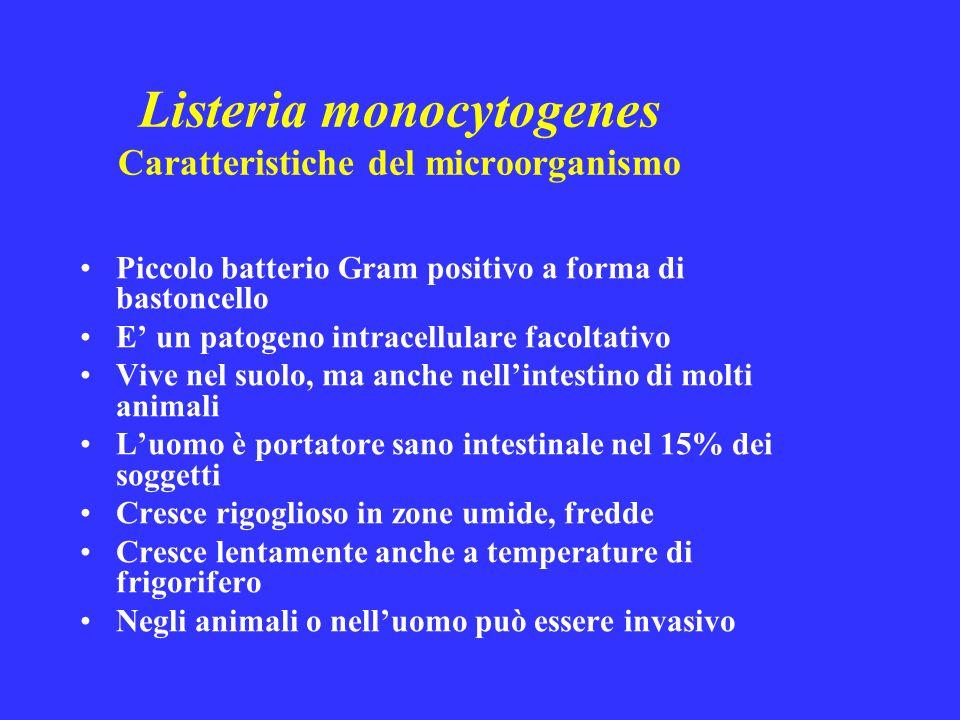Il 95% degli episodi di listeriosi che si verificano sono veicolati dagli alimenti, quindi … … la via di penetrazione nell'organismo umano è l'intestino