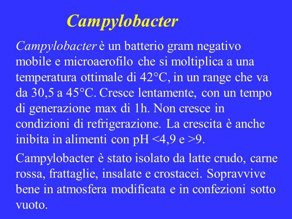 Campylobacter Campylobacter è un batterio gram negativo mobile e microaerofilo che si moltiplica a una temperatura ottimale di 42°C, in un range che v