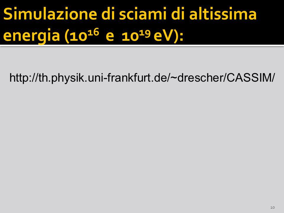 Simulazione di sciami di altissima energia (10 16 e 10 19 eV) : 10 http://th.physik.uni-frankfurt.de/~drescher/CASSIM/