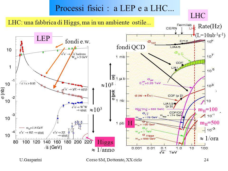 U.GaspariniCorso SM, Dottorato, XX ciclo24 Processi fisici : a LEP e a LHC...