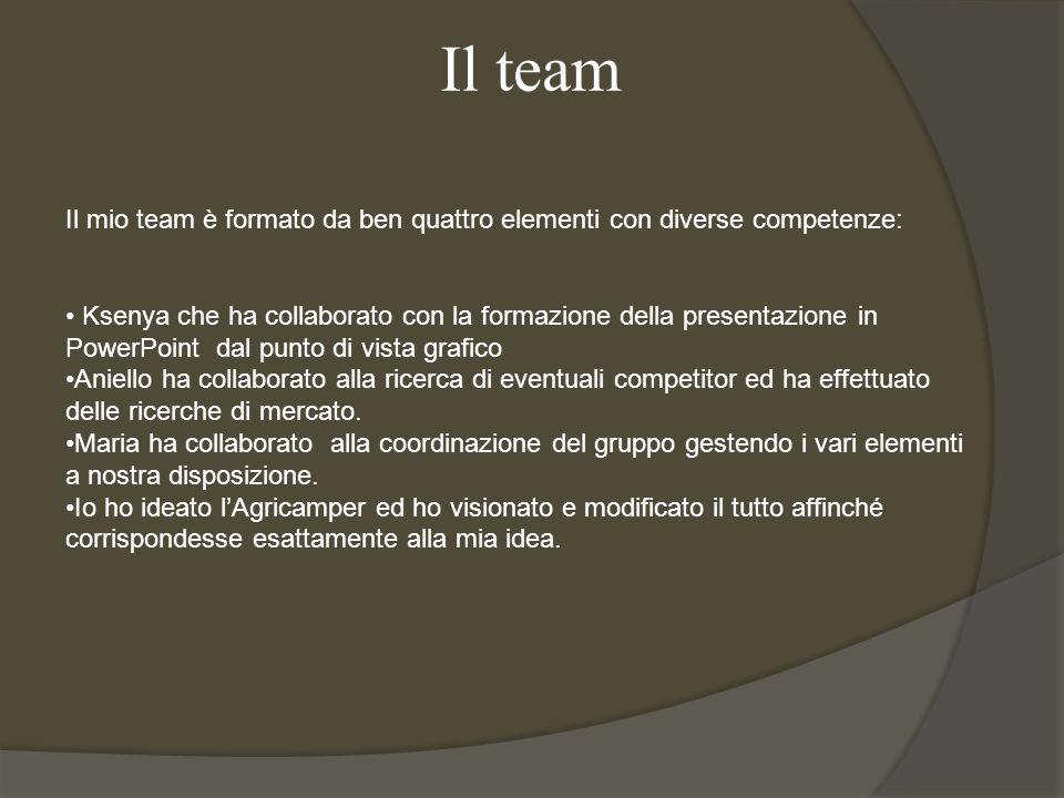 Il team Il mio team è formato da ben quattro elementi con diverse competenze: Ksenya che ha collaborato con la formazione della presentazione in Power