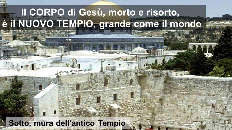 Sotto, mura dell'antico Tempio Il CORPO di Gesù, morto e risorto, è il NUOVO TEMPIO, grande come il mondo