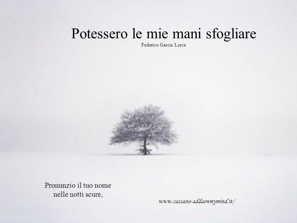 Potessero le mie mani sfogliare Federico Garcia Lorca Pronunzio il tuo nome nelle notti scure, www.cassano-addaonmymind.it/