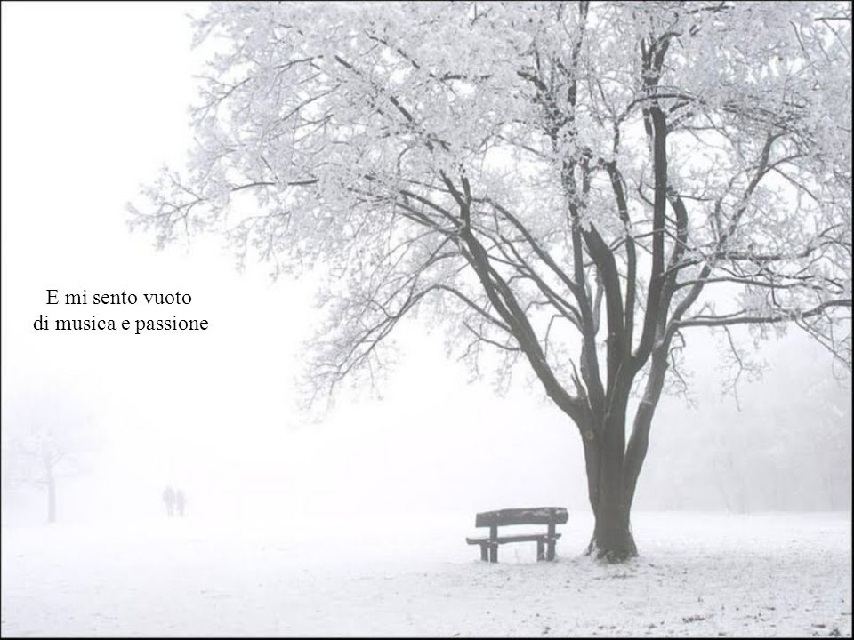 Se la nebbia svanisce, quale nuova passione mi attende ?
