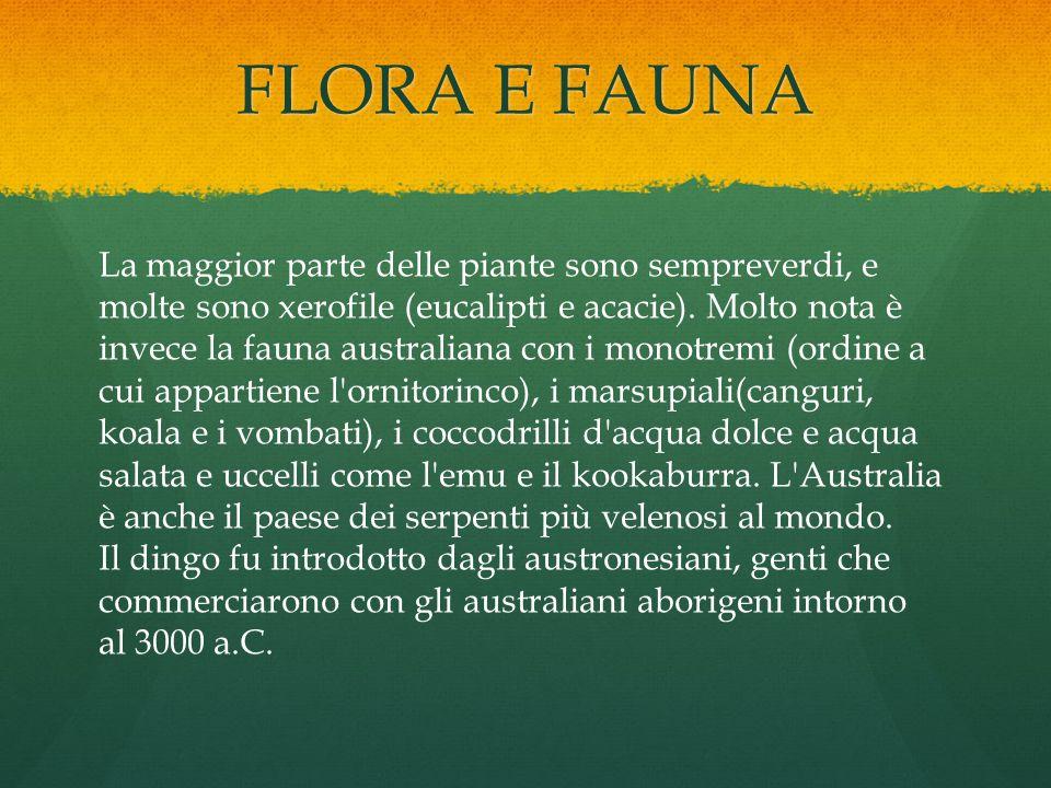 FLORA E FAUNA La maggior parte delle piante sono sempreverdi, e molte sono xerofile (eucalipti e acacie). Molto nota è invece la fauna australiana con