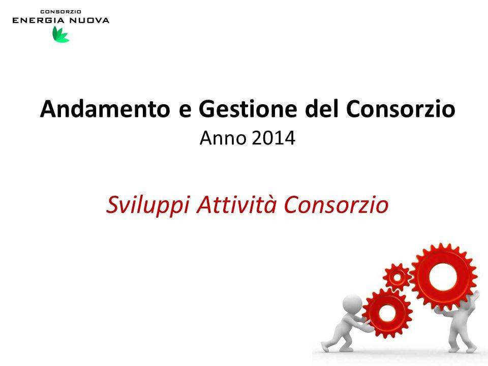 Sviluppi Attività Consorzio Andamento e Gestione del Consorzio Anno 2014