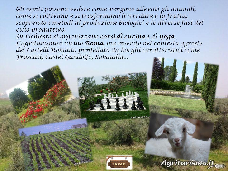 Gli ospiti possono vedere come vengono allevati gli animali, come si coltivano e si trasformano le verdure e la frutta, scoprendo i metodi di produzione biologici e le diverse fasi del ciclo produttivo.