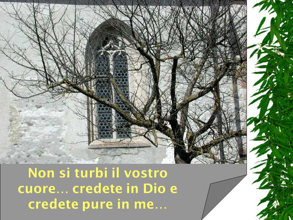 Io sono la porta, dice il Signore, chi passa per me sarà salvo, entrerà e uscirà e troverà pascolo.