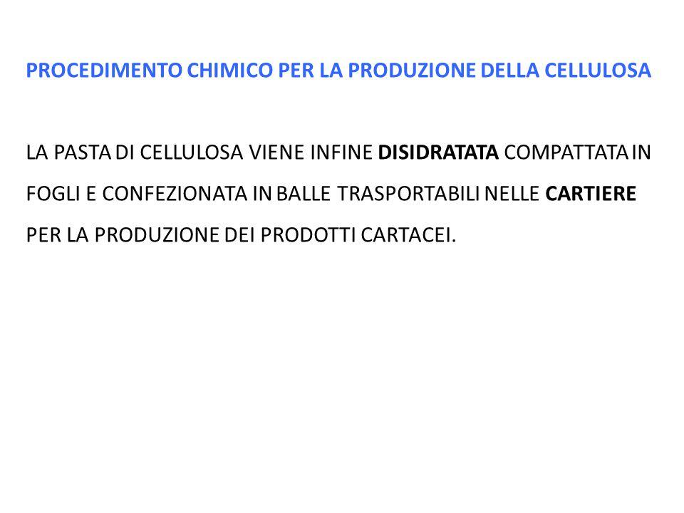 PROCEDIMENTO CHIMICO PER LA PRODUZIONE DELLA CELLULOSA LA PASTA DI CELLULOSA VIENE INFINE DISIDRATATA COMPATTATA IN FOGLI E CONFEZIONATA IN BALLE TRAS