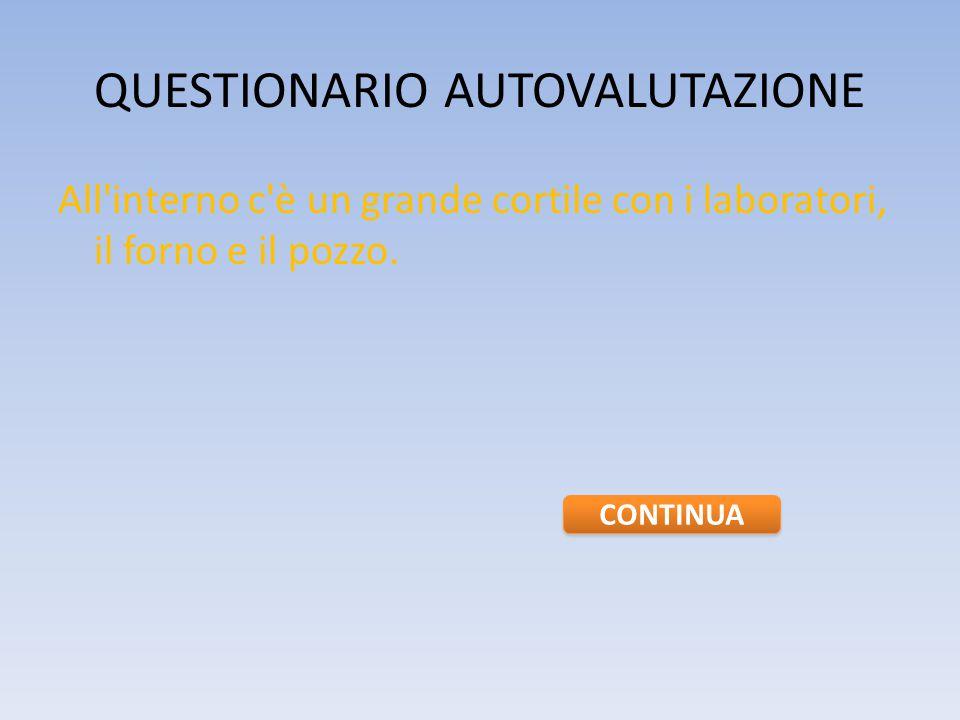 QUESTIONARIO AUTOVALUTAZIONE 2.