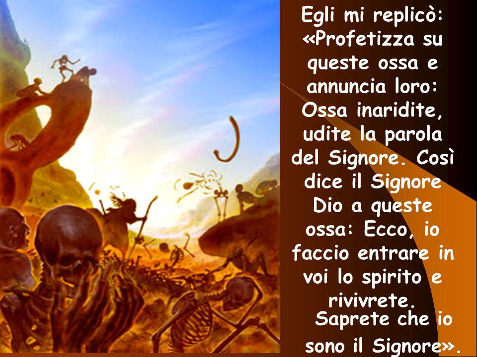 Egli mi replicò: «Profetizza su queste ossa e annuncia loro: Ossa inaridite, udite la parola del Signore. Così dice il Signore Dio a queste ossa: Ecco