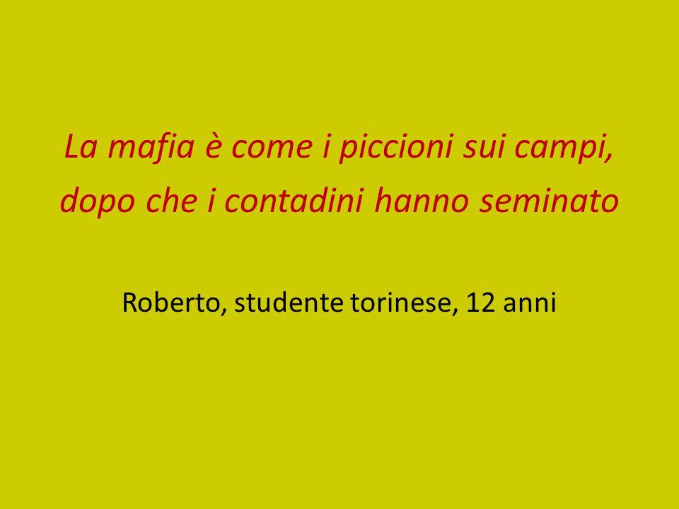 La mafia è come i piccioni sui campi, dopo che i contadini hanno seminato Roberto, studente torinese, 12 anni