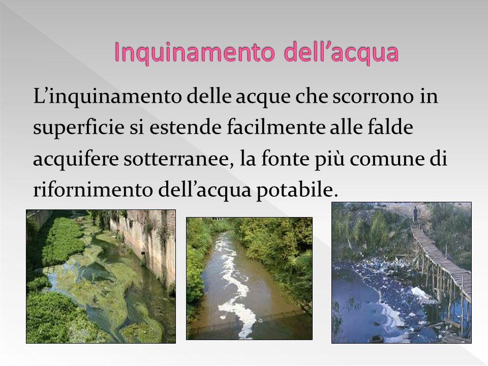 Le principali fonti di inquinamento dei fiumi sono:  Le acque urbane che contengono i rifiuti della nostra vita quotidiana, fra i quali detersivi, so
