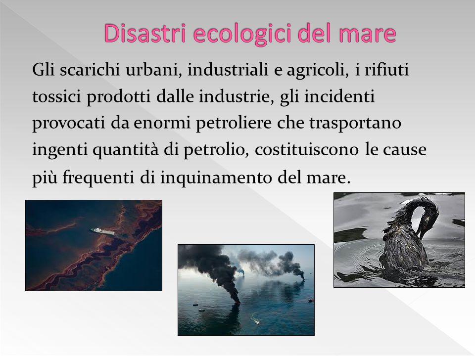 Gli scarichi urbani, industriali e agricoli, i rifiuti tossici prodotti dalle industrie, gli incidenti provocati da enormi petroliere che trasportano ingenti quantità di petrolio, costituiscono le cause più frequenti di inquinamento del mare.