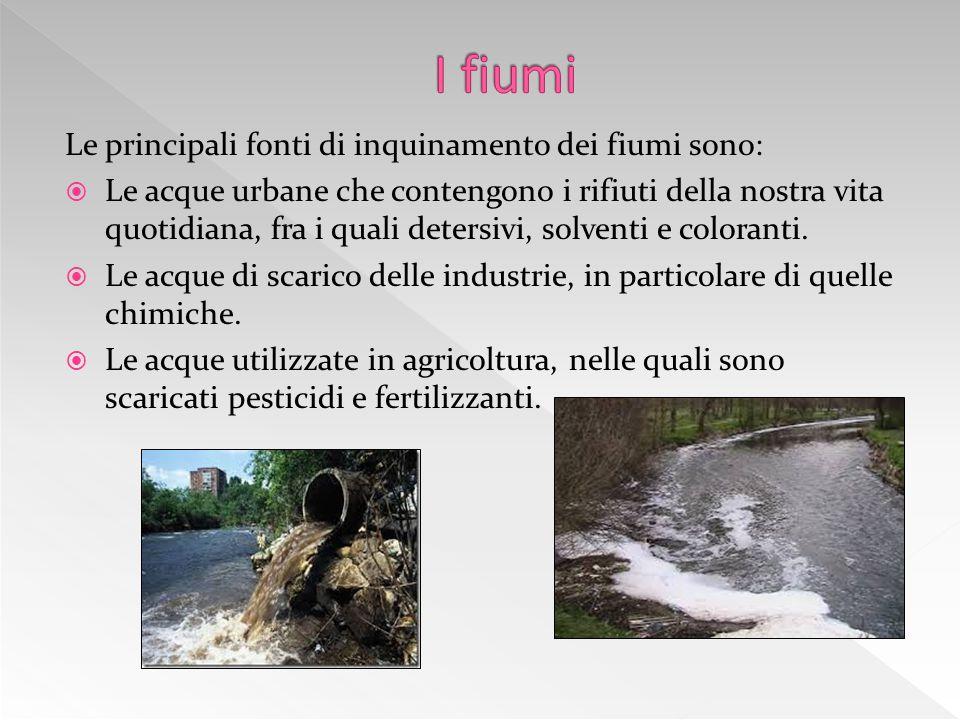 Le principali fonti di inquinamento dei fiumi sono:  Le acque urbane che contengono i rifiuti della nostra vita quotidiana, fra i quali detersivi, solventi e coloranti.