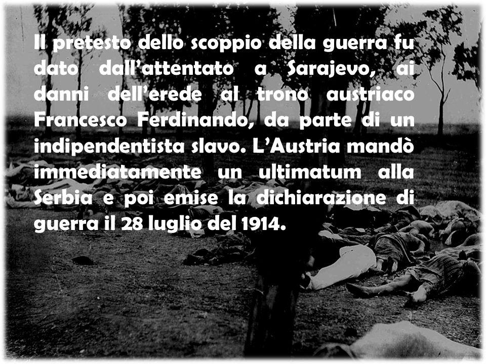 Il pretesto dello scoppio della guerra fu dato dall'attentato a Sarajevo, ai danni dell'erede al trono austriaco Francesco Ferdinando, da parte di un