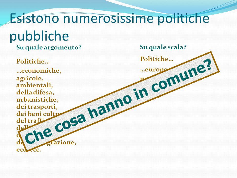 Esistono numerosissime politiche pubbliche Su quale scala? Politiche… …europee, nazionali, regionali, locali. Su quale argomento? Politiche… …economic