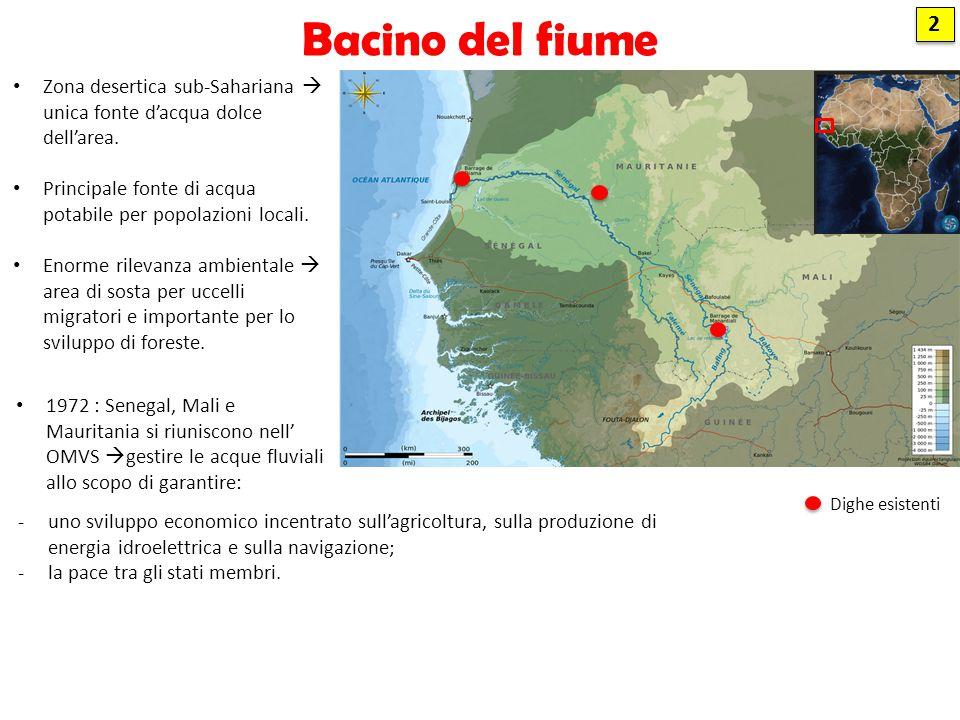 Diga Diama CONTRO ( - ) Sfratto delle popolazioni locali Malattie (malaria, diarrea, schistosomiasi) Alga infestante d'acqua dolce Estinzione locale di specie animali (coccodrillo, ippopotamo e lamantino) Costruita nel 1986, in Senegal SCOPO ( + ) Contrastare la risalita di acqua salata dall'Oceano Atlantico Irrigazione Navigazione fluviale 3 3