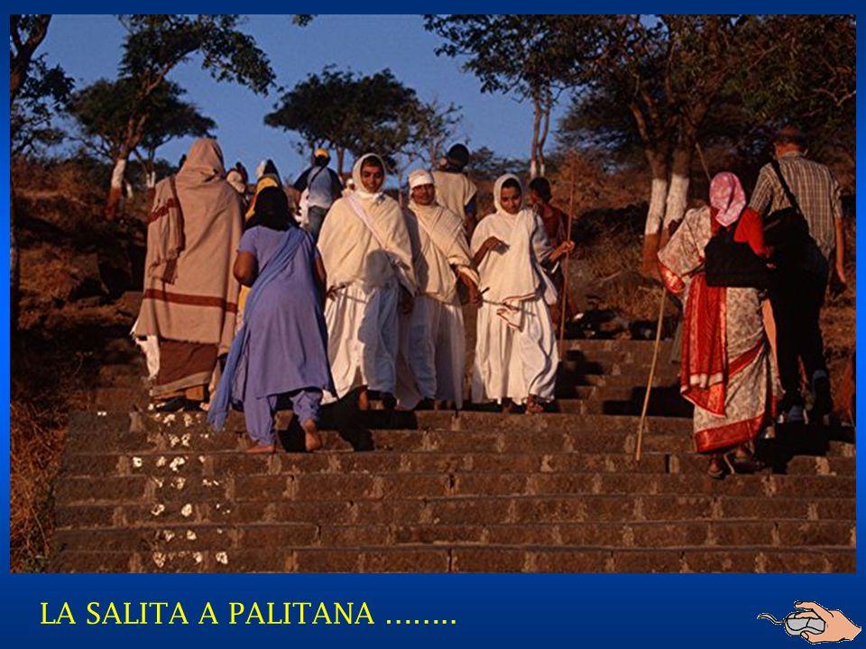 LA SALITA A PALITANA ……..