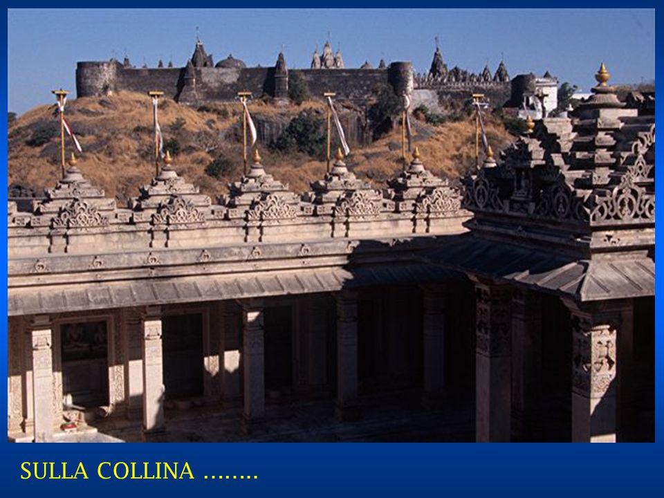 SULLA COLLINA ……..