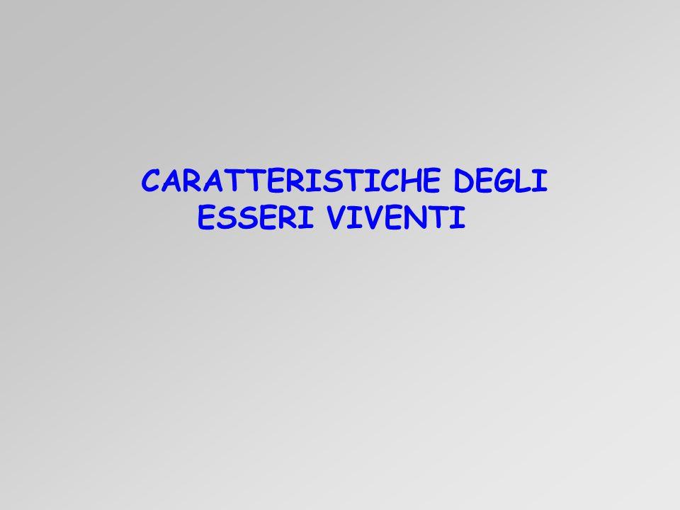 CARATTERISTICHE DEGLI ESSERI VIVENTI