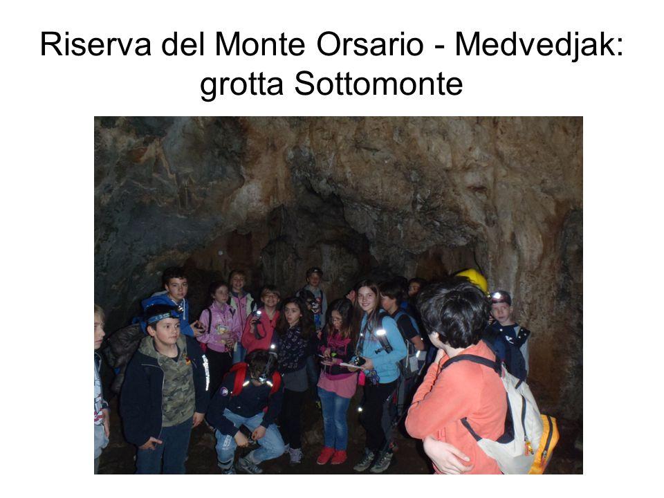 Riserva del Monte Orsario - Medvedjak: grotta Sottomonte