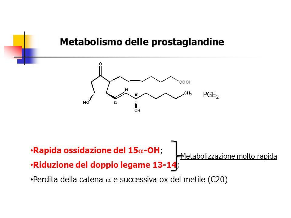 Metabolismo delle prostaglandine PGE 2 Rapida ossidazione del 15  -OH; Riduzione del doppio legame 13-14; Perdita della catena  e successiva ox del