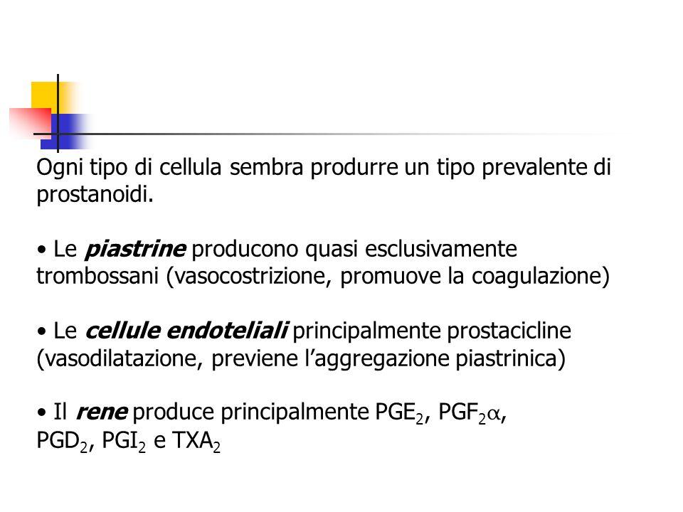 Ogni tipo di cellula sembra produrre un tipo prevalente di prostanoidi. Le piastrine producono quasi esclusivamente trombossani (vasocostrizione, prom